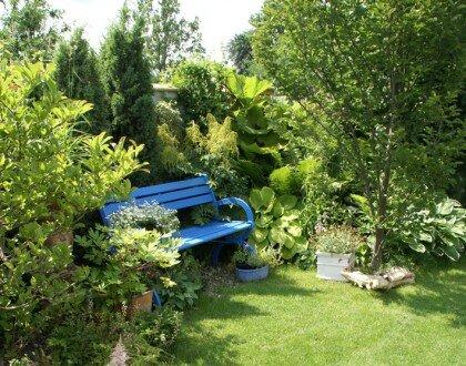 2009, nasadzenia w stylu naturalistycznym w ogrodzie